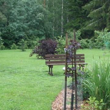 Kortteen puutarha