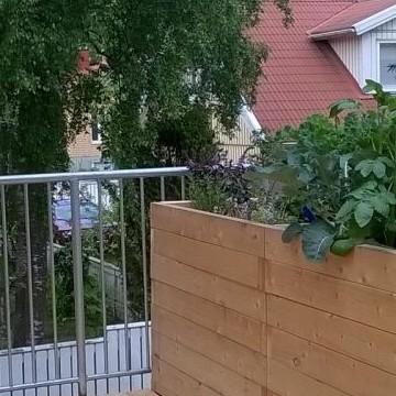 Kissankäpälän puutarha