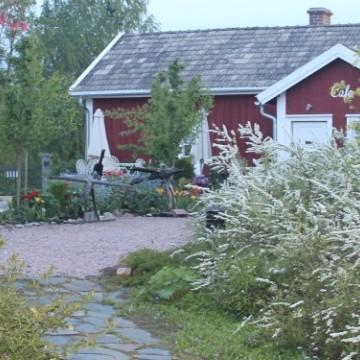 Astas trädgård