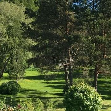 Engströmin puutarha