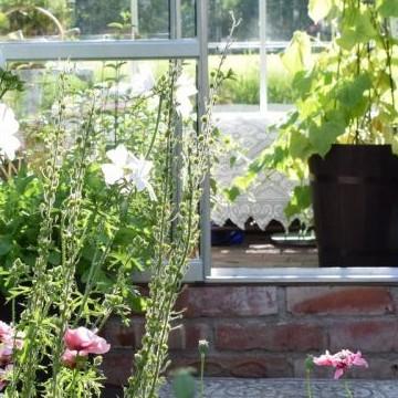 Marian koti ja puutarha
